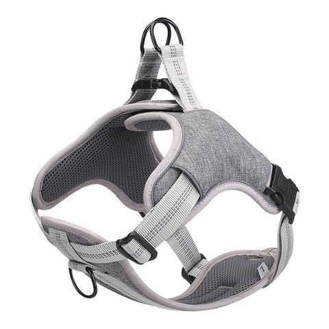 Reflective Dog Harnesses & Leashes