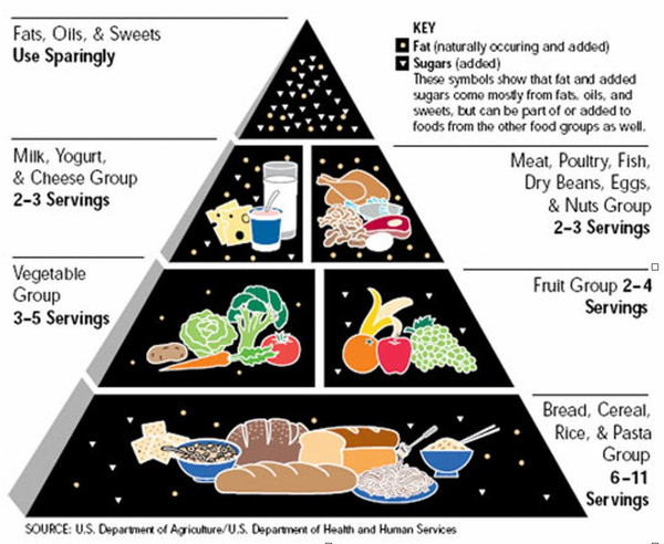 The food pyramid showing what to eat