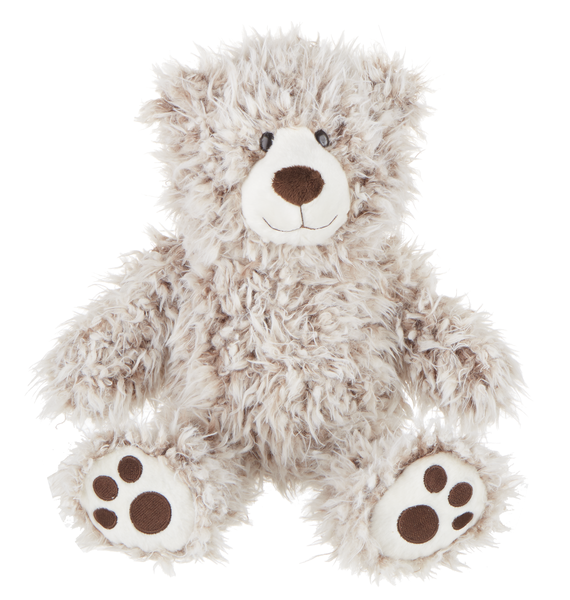 Ashwin Teddy Bear