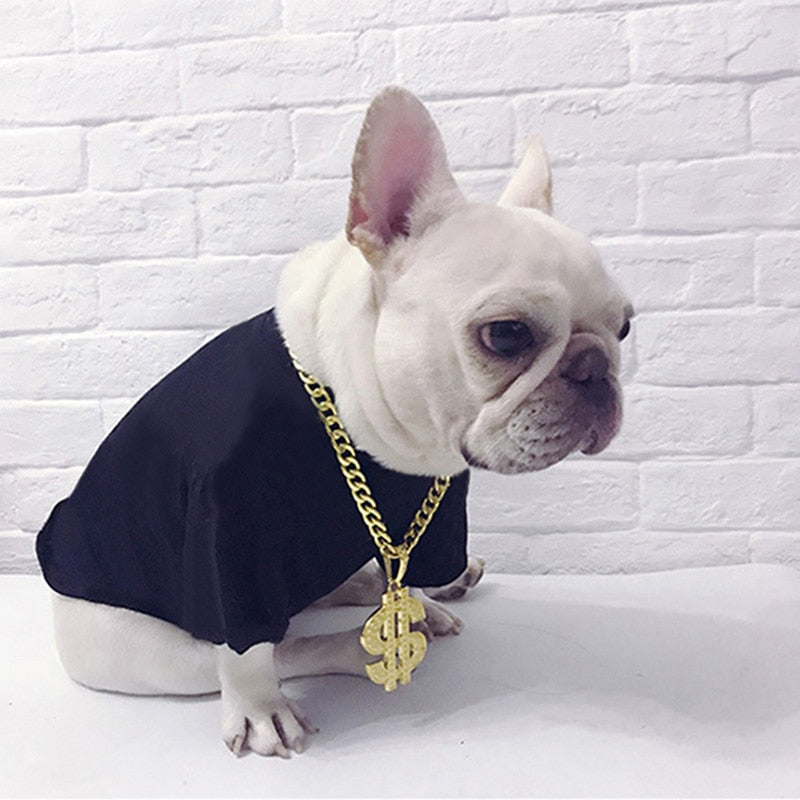 US Dollar Necklace for Dogs | Luxury Gold Color Jewelery for dogs | Dog Chains