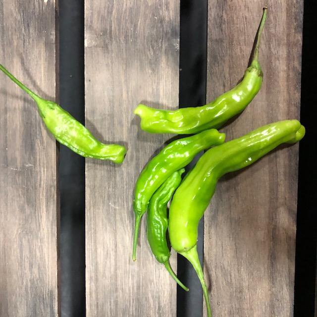 Local Shishito Peppers from Jenschke Farms |  Hardie's Direct, Austin TX
