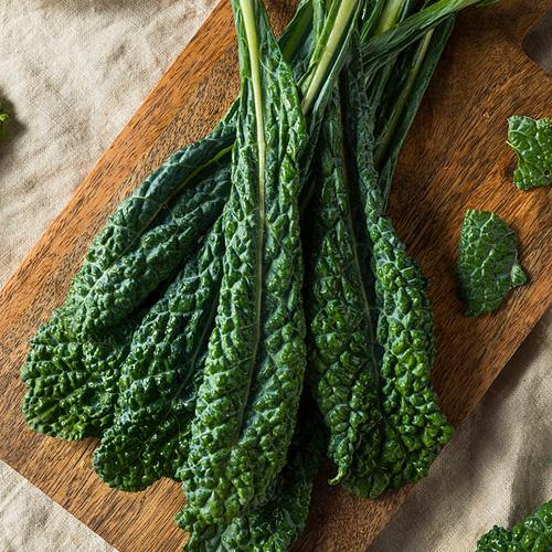 Locally Grown Lacinato Kale - Hardies Direct, Austin TX