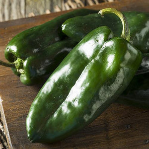 Fresh Poblano Peppers - Hardie's Direct, Austin TX