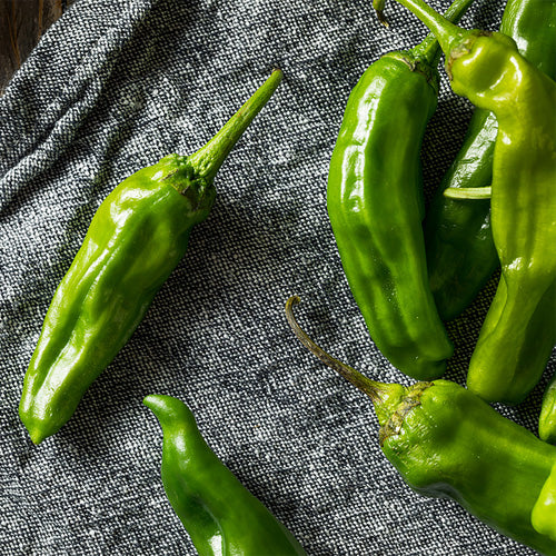 Shishito Peppers - Hardie's Direct, Austin TX