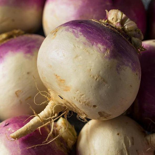 Locally Grown Turnips - Hardie's Direct, Austin TX