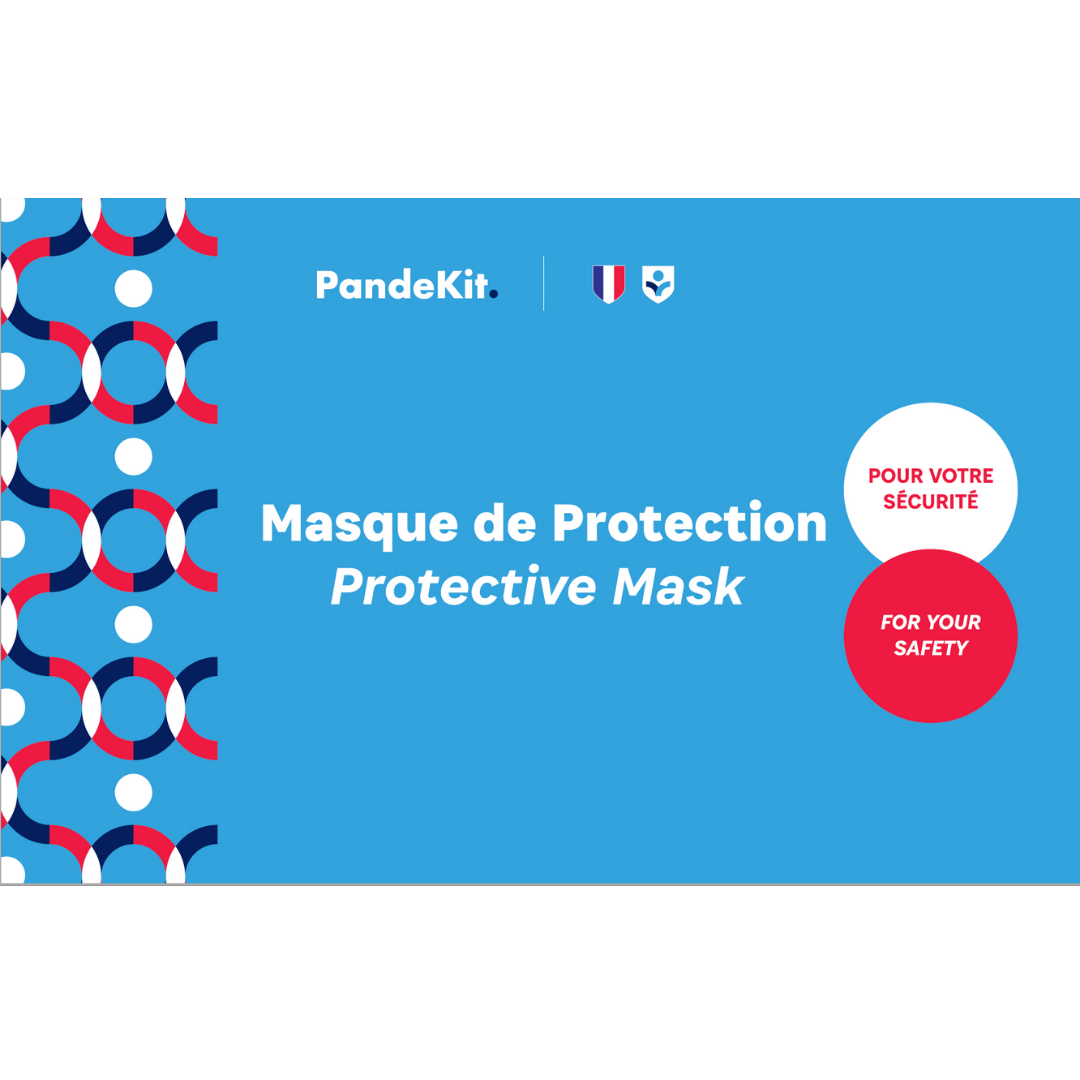 Lot de 100 Masques de Protection sous sachet individuel