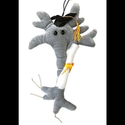 Brain Cell with Diploma