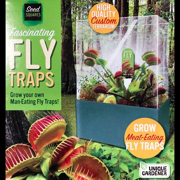 Fascinating Fly Traps