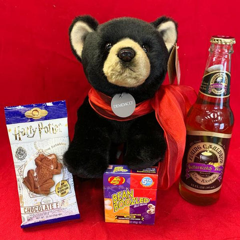 Harry Potter Valentines Bear Bundle