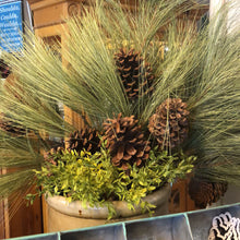 "Load image into Gallery viewer, Giant Pine Spray with Cones 32"" Tall"