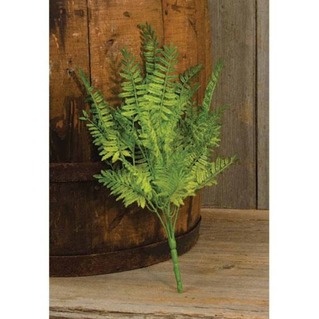 Wood Fern Bush 14