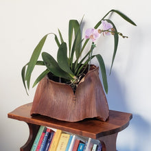 Load image into Gallery viewer, Zen Orchid Basket - Custom Order
