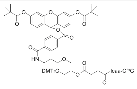 6-FAM LCAA CPG (DMT)
