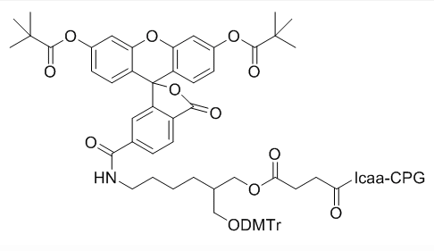6-FAM Glyceryl Support