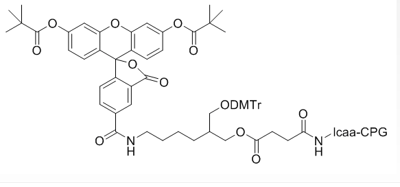 DMT-5-FAM LCAA CPG