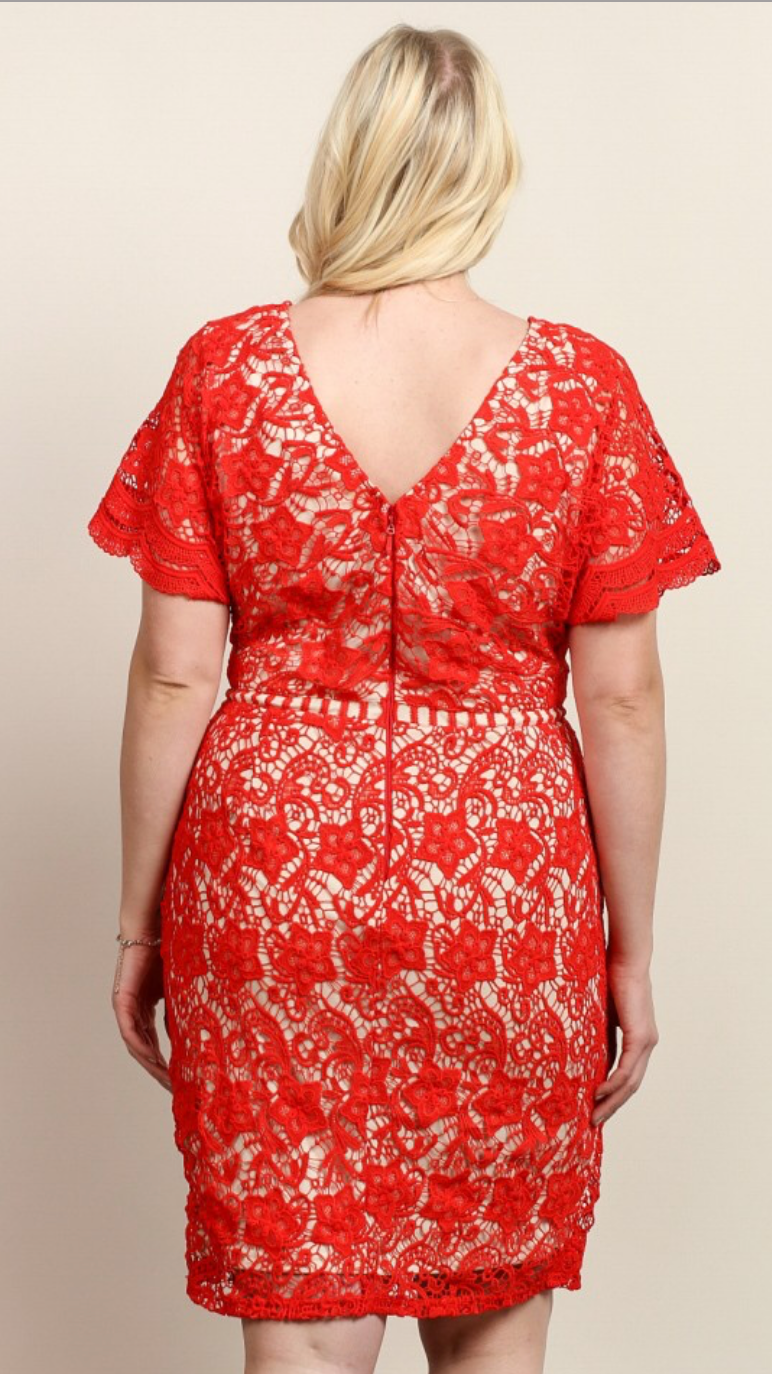 Curvy Brianna Dress