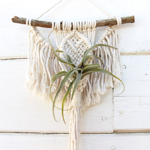 Macrame Air Plant Holder - Angel - White - Bohemian Home Decor Wall Hanging