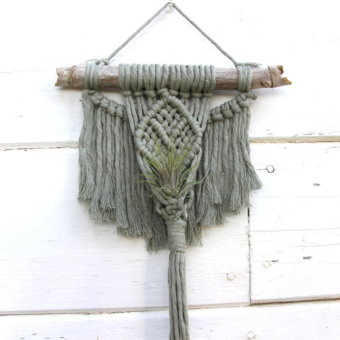 Macrame Air Plant Holder - Angel - Sage - Bohemian Home Decor Wall Hanging