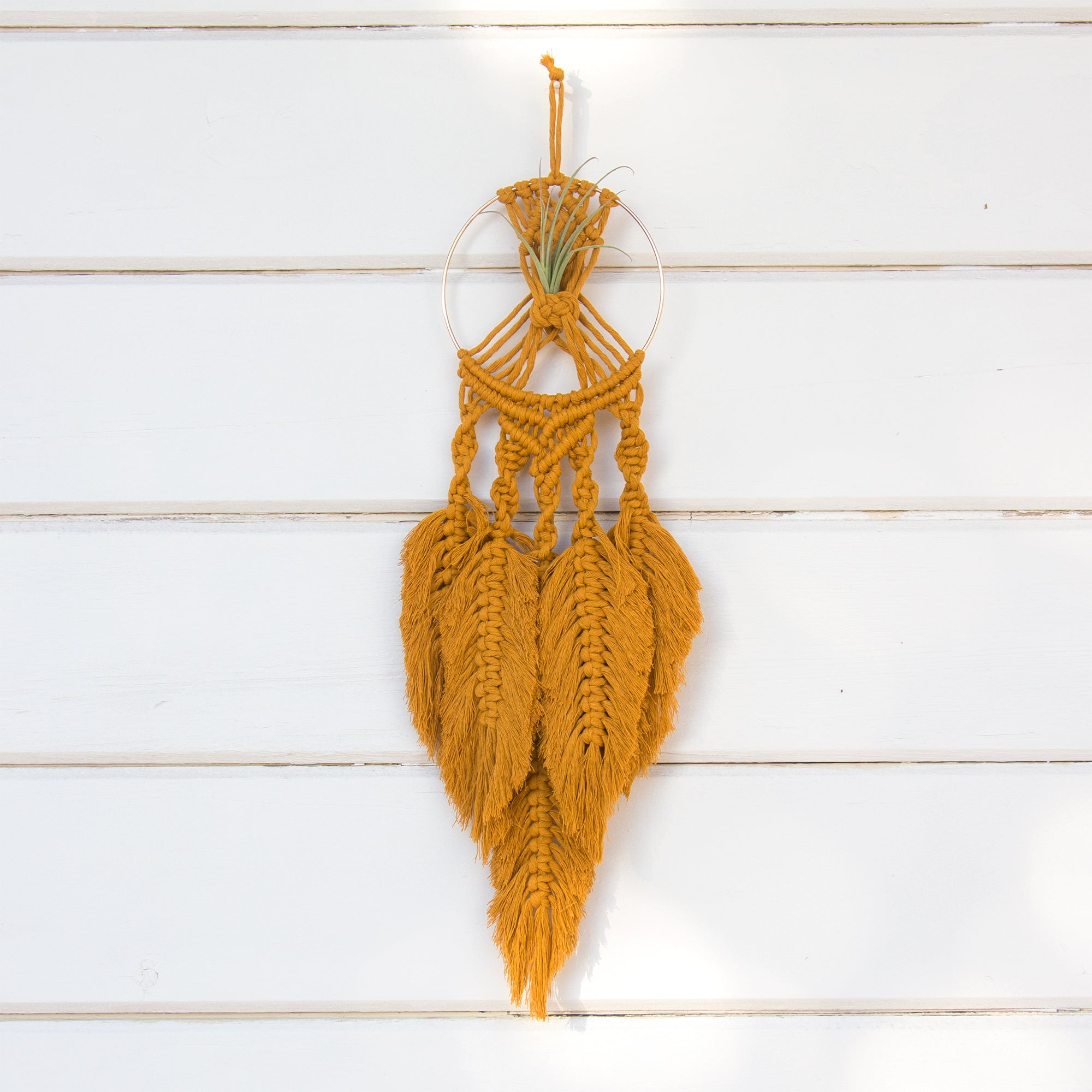 Dreamcatcher Macrame Air Plant Holder - Bohemian Home Decor Wall Hanging
