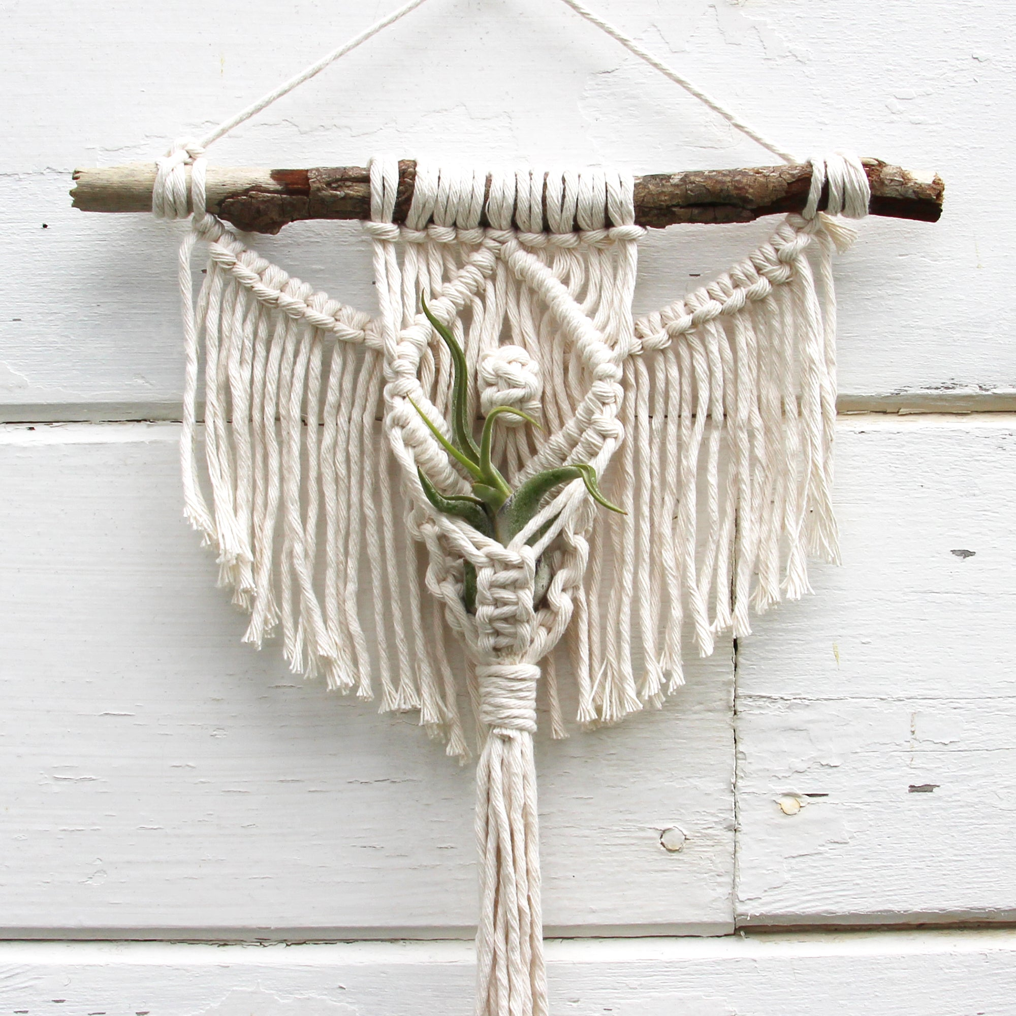 Macrame Air Plant Holder - Angel with an Eye - White - Bohemian Home Decor Wall Hanging