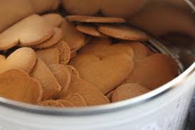 Speculoos a Substitute