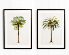 Load image into Gallery viewer, Classic Palms DIY Decor Pack