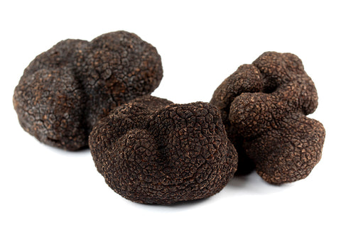 FIRST Black Truffle