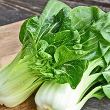 Load image into Gallery viewer, Cabbage, Bok Choy - Hardie's Direct Houston, TX