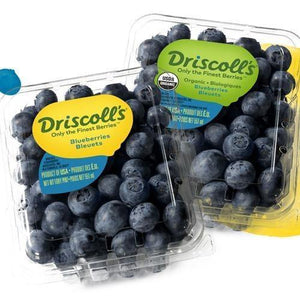 Blueberries, Driscoll - Hardie's Direct Houston, TX