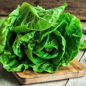 Lettuce, Romaine 1-Count