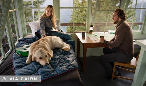 Cairn Subscribers' Choice