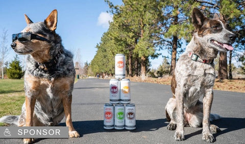 Two dogs with cans of Hiball Energy Seltzer stacked between them