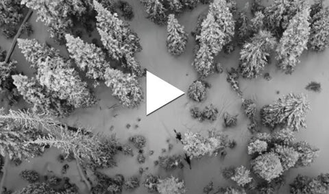 Looking down at snowy forest