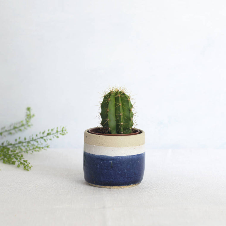 Libby Ballard mini planter, blue
