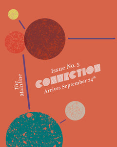 Issue No. 5: The Connection Issue
