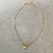 Load image into Gallery viewer, 18K Gold Vermeil Drip Choker