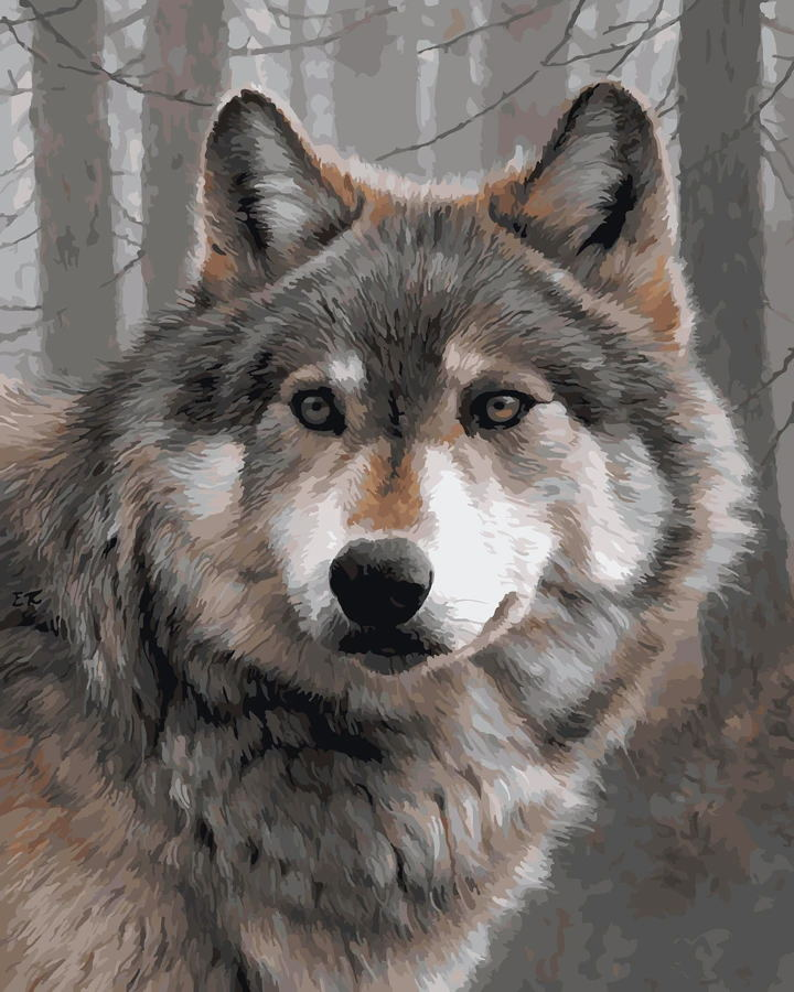 Animal Wolf Paint By Numbers Kits UK For Adult OTG6207