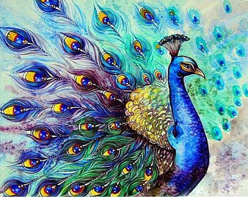 Peacock Paint By Numbers Kits UK With Frame PH9456