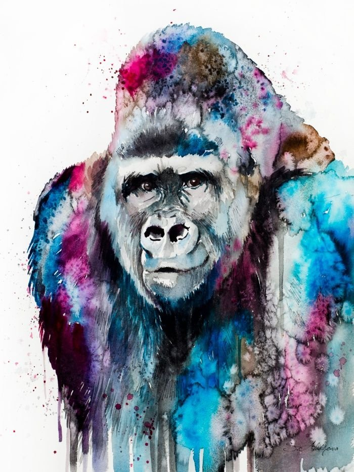 Animal Gorilla Paint By Numbers Kits UK For Adult RSB8484
