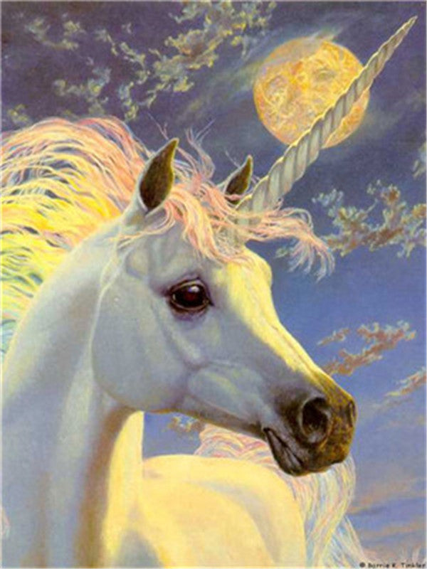 Animal Unicorn Paint By Numbers Kits UK For Adult Y5264