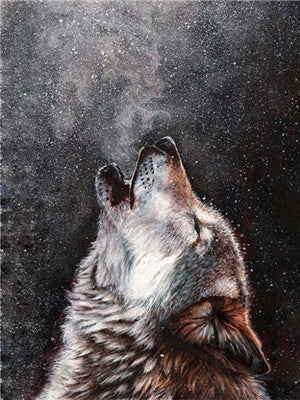 Animal Wolf Paint By Numbers Kits UK For Adult Y5581