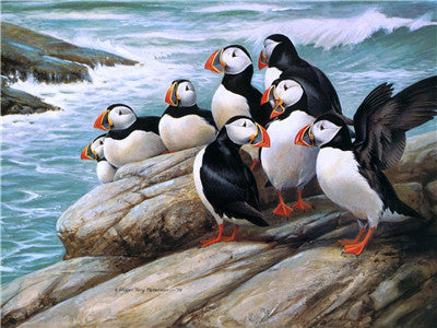 Animal Penguin Paint By Numbers Kits UK For Adult Y5658