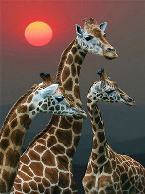 Animal Giraffe Paint By Numbers Kits UK For Adult Y5700