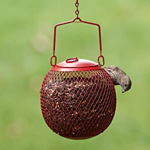 Perky-Pet Red Seed Ball