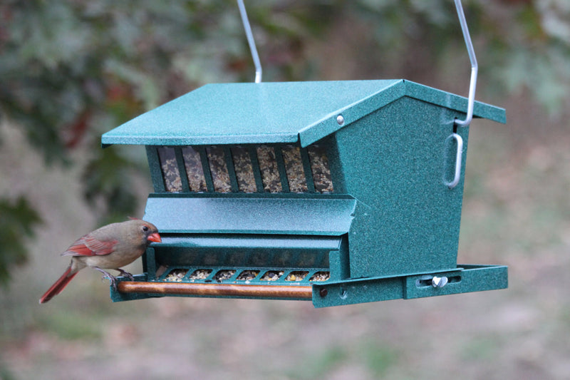 Absolute Single-Sided Squirrel Resistant Feeder