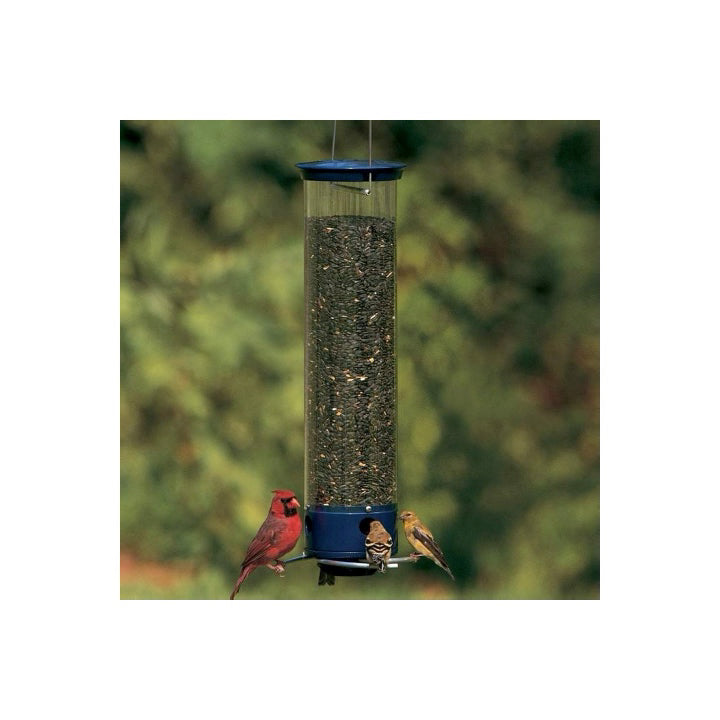 Droll Yankee Squirrel Proof Feeder