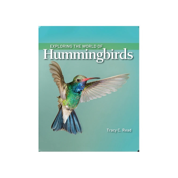 Exploring The Worlds Of Hummingbirds
