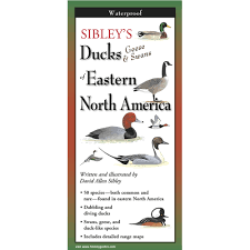 Sibley's Ducks, Geese & Swana of Eastern North America