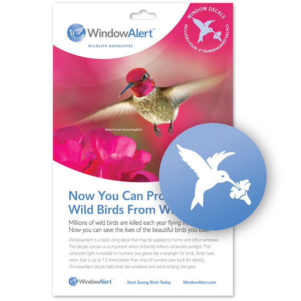 WindowAlert UV decals - hummingbird