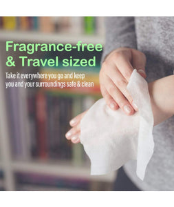 Hand Sanitizer & Wipes Kit